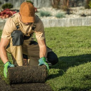 Landscaping Industry Booming Despite Pandemic, Says NALP Chief