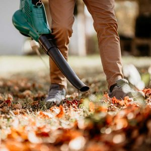 Leaf Blower Buying Guide for 2020