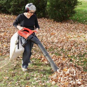 Leaf Mulcher Buying Guide for 2020
