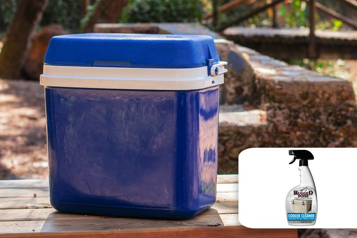 picnic cooler fall cleaning