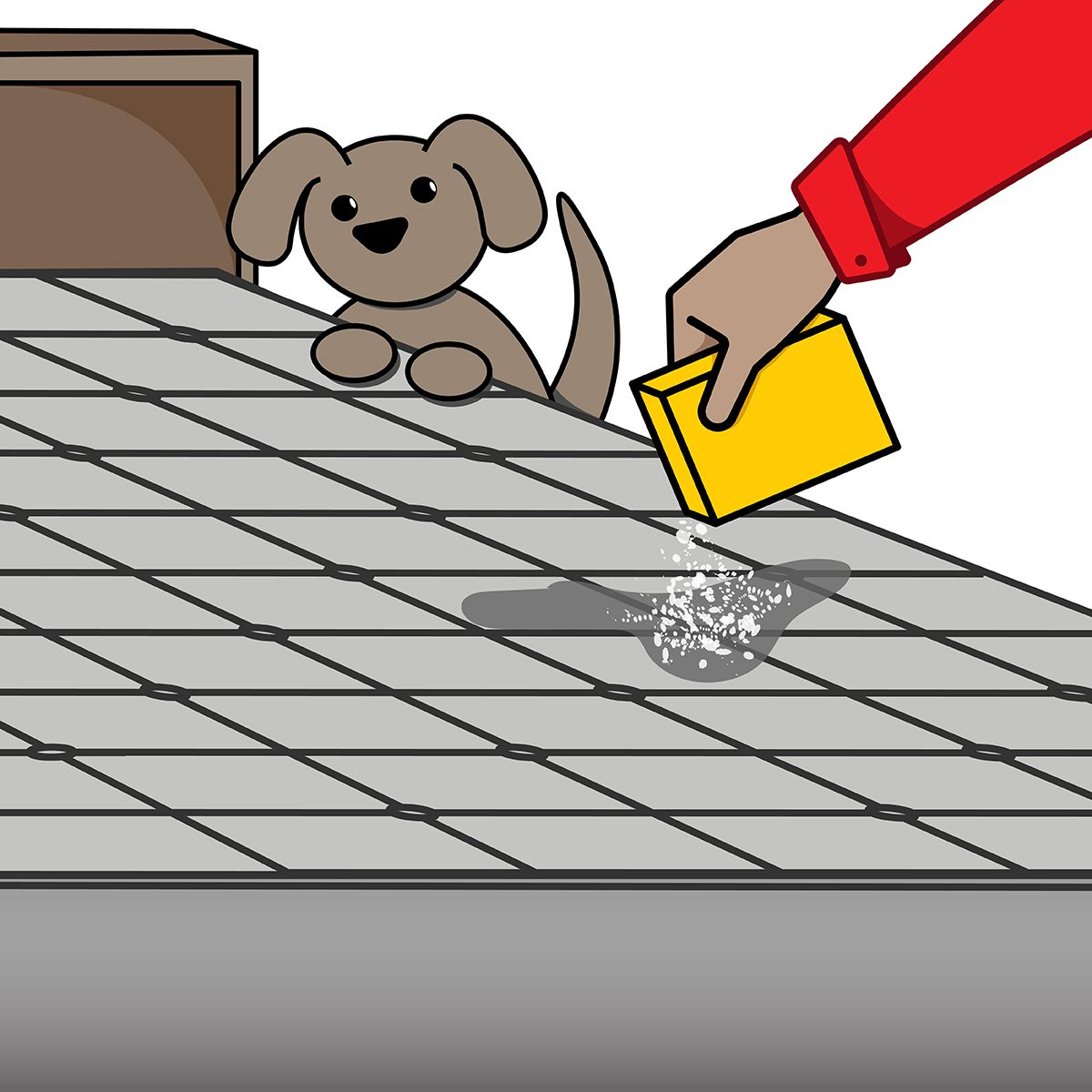 How To Get Dog And Cat Urine Out Of Your Mattress The Family Handyman