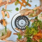 15 Things You Should Never Put Down Your Garbage Disposal