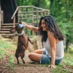 6 Dogs Toys to Avoid (and 6 to Try Instead)