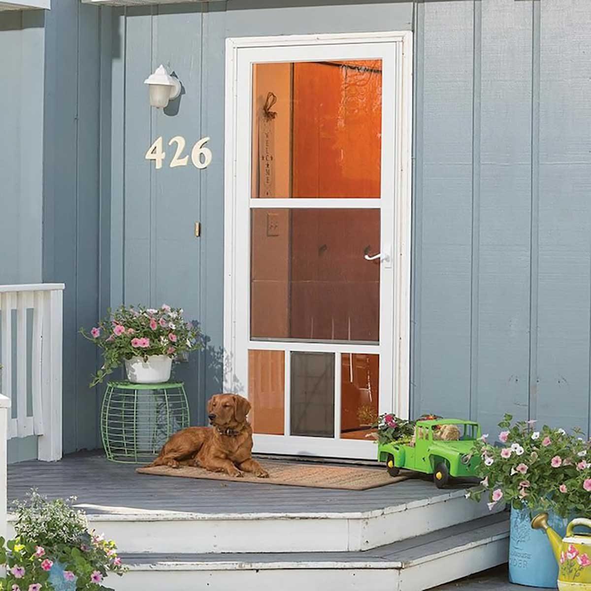 7 Best Storm Doors The Family Handyman For regular doors, door entry dog doors will do the trick. 7 best storm doors the family handyman