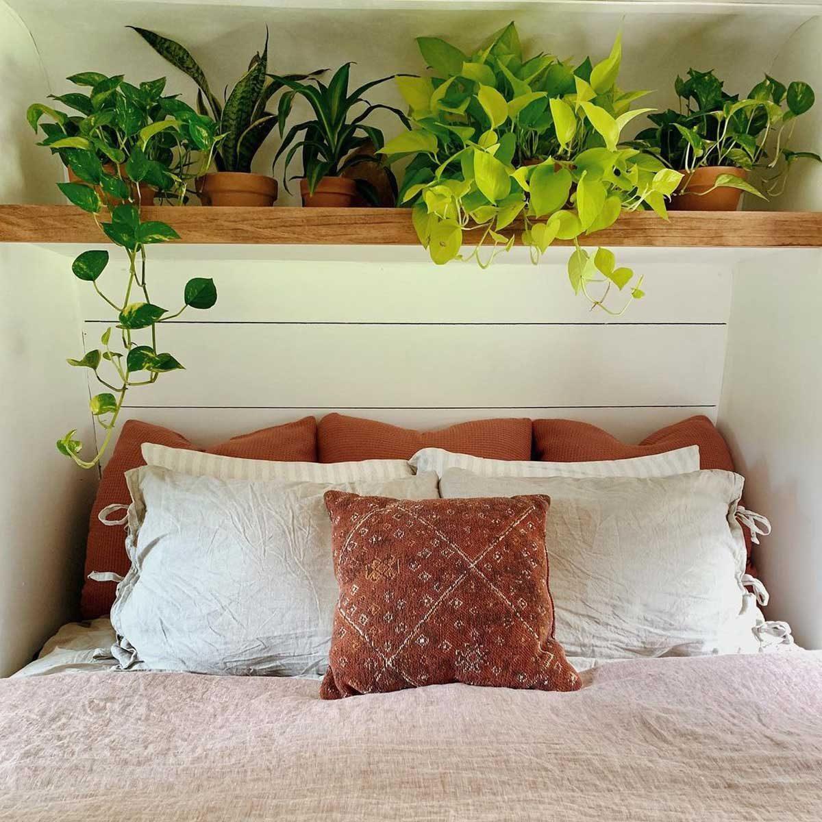 Tinyhome bedroom plants