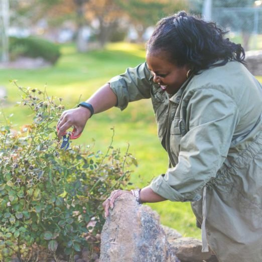 10 Perennials You Should Cut Back Every Fall (And 5 to Let Be)