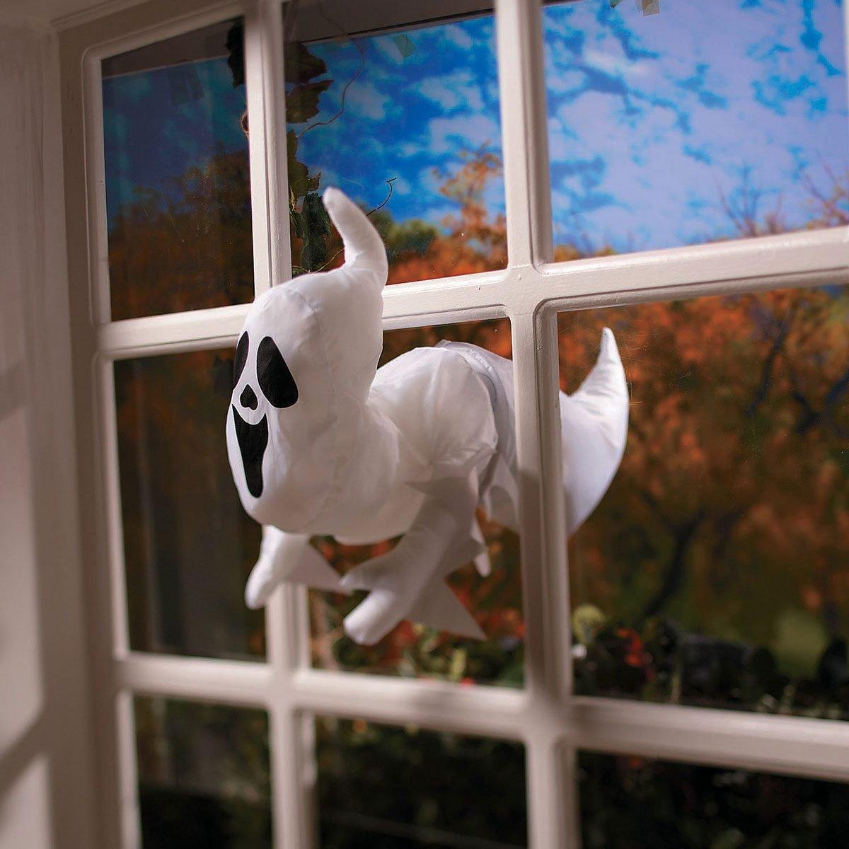Window ghost
