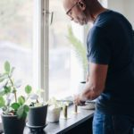 Outdoor Plants That Can Survive and Thrive Indoors