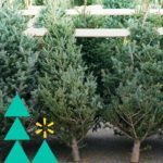 Walmart Will Install Outdoor Christmas Lights AND Deliver Your Christmas Tree