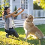 Top 8 Dog Training Tools for Every Dog Owner