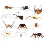 Are Spiders Dangerous to People, Pets and Property?