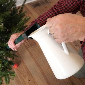 How and When to Water a Christmas Tree