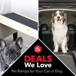 Deals We Love: Pet Ramps for Your Cat or Dog