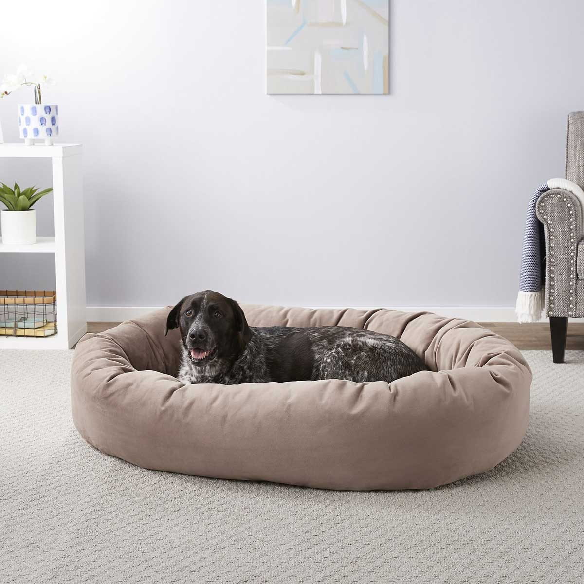 Dog Bed 165320 Main. Ac Sl1500 V1568211215