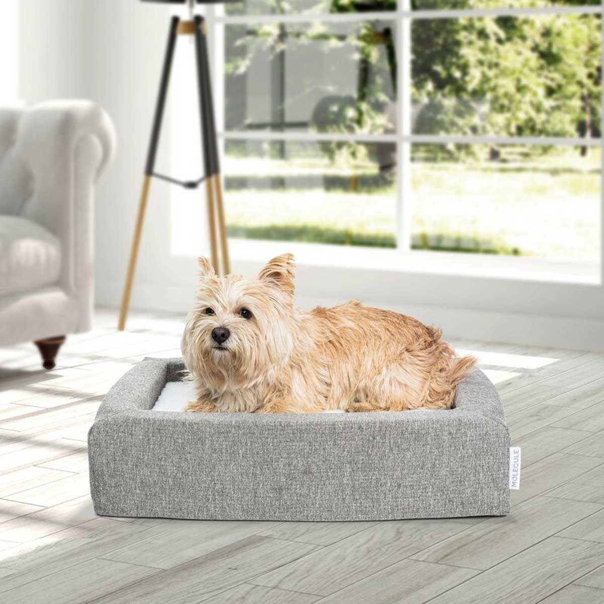 Dog Bed Pet+bolster