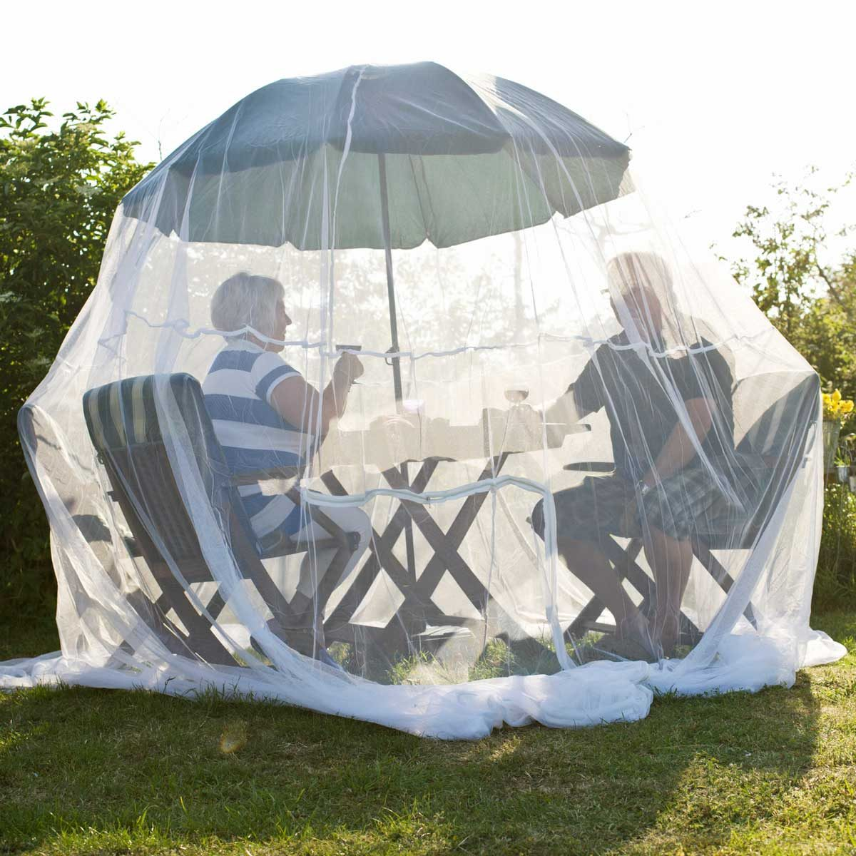 Insect Net Gettyimages 98609835