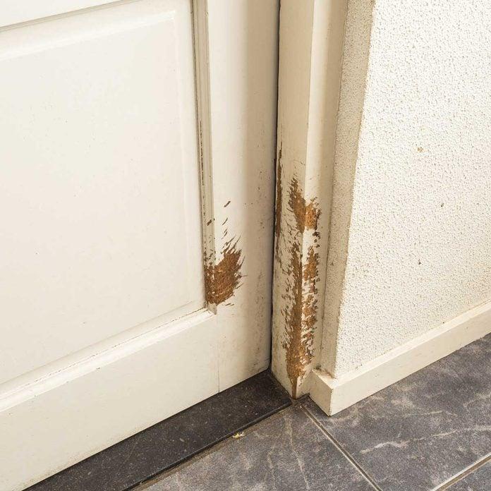 Scratched Door Gettyimages 1132819349