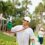 NALP Announces Virtual Networking Event for Landscapers