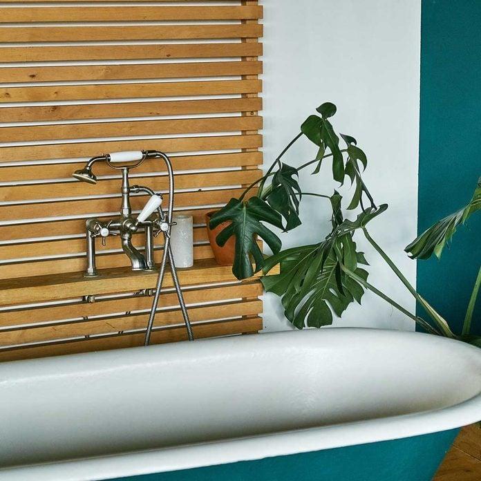 Bathroom Monstera Gettyimages 1197146425