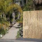 10 Best Outdoor Privacy Screens