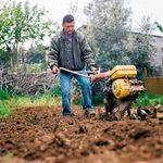 Should You Buy or Rent a Tiller for Your Garden?