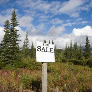 15 Things to Know Before Buying Land