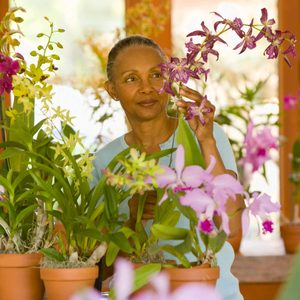 How to Prune Orchids