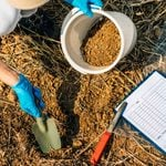 What To Know About Soil Testing