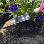 Tips for Fertilizing Flowers With Bone Meal