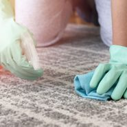 How to Clean Carpets Without a Machine