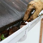 Should You Pay to Have Your Gutters Cleaned?