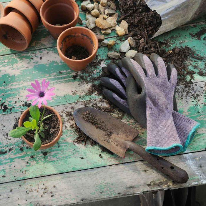 Garden Gear