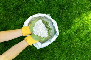 Homeowner's Guide to Garden Fertilizers
