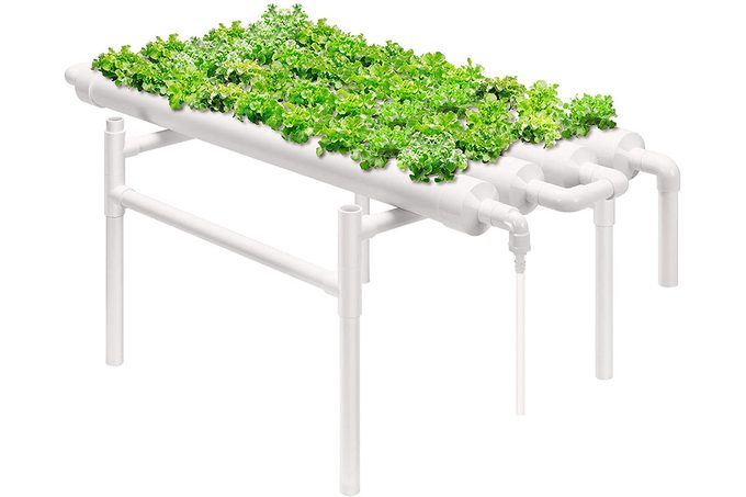 Hydroponic Garden Table