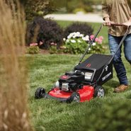 8 Best Affordable Lawn Mowers