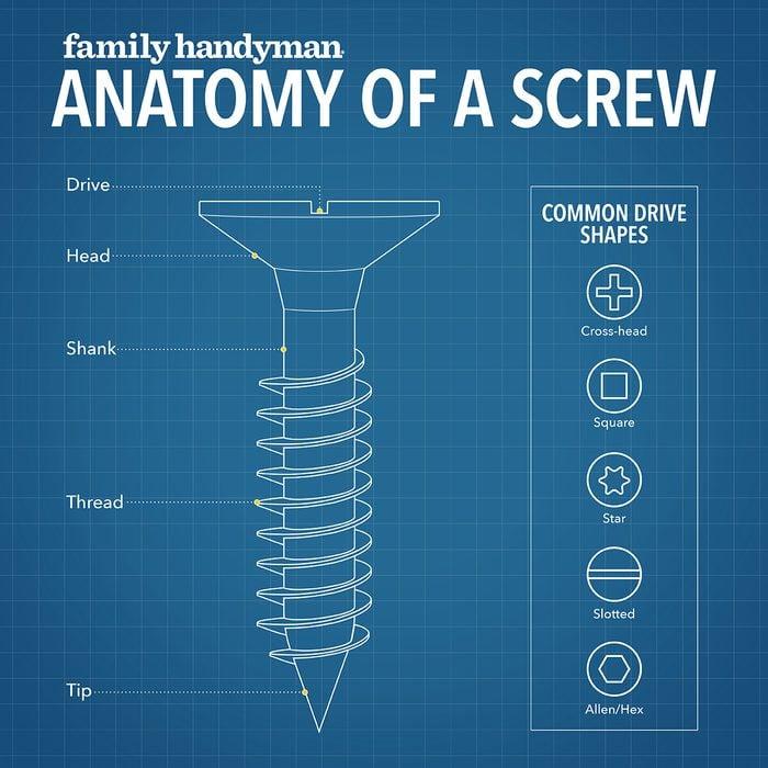 Anatomy Of A Screw