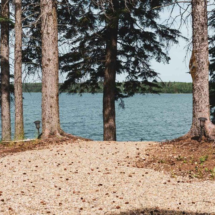 Shoreline Mulch