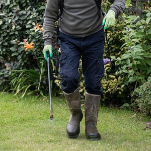 8 Best Weed Killers for Lawn