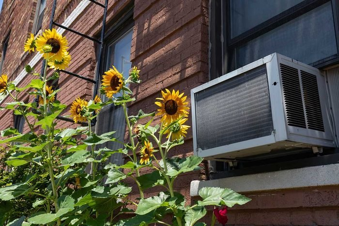 Window Air Conditioner Gettyimages 1265797568
