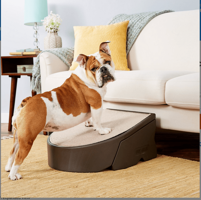 Chewy Pet Gear Easy Step Dog Stairs