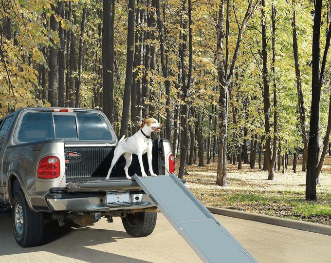 Chewy Petsafe Happy Ride Telescoping Dog Car Ramp