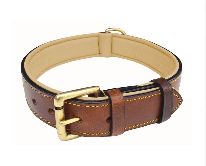 Chewy Soft Touch Collar