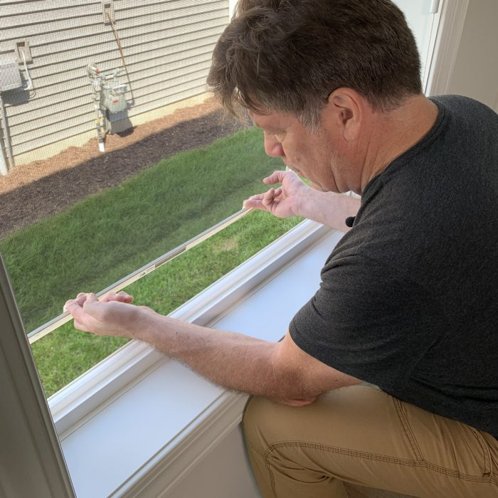 removing the window screens