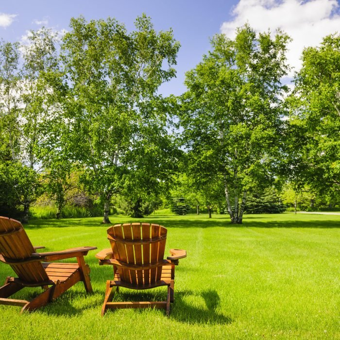 two adirondack chairs positioned in the backyard; lush green lawn on a sunny day