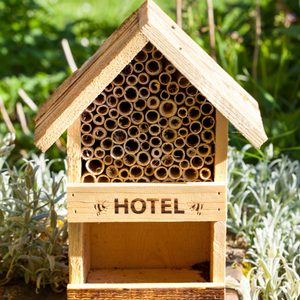9 Best Bug Hotels of 2021