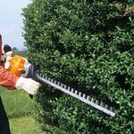 7 Best Gas and Electric Hedge Trimmers of 2021