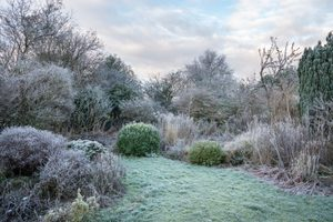 How To Winterize Your Lawn and Yard