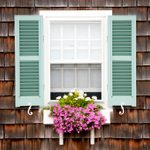 6 Best Plants for Window Boxes