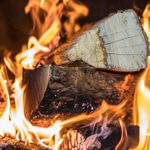 How Long Should You Dry Firewood?