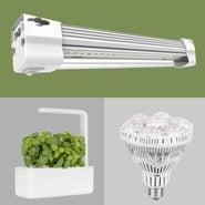8 Best Grow Lights For Indoor Plants Featured Image